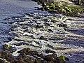 Aberystwyth - panoramio (49).jpg