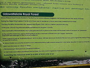 Udawattakele Forest Reserve - Introduction at the entrance