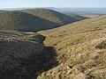 Above Glen Tye - geograph.org.uk - 331579.jpg