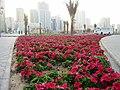Al- Majas, Sharjah - panoramio (3).jpg