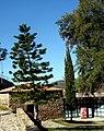 Alcoutim (Portugal) (33118087971).jpg