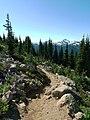 Alpine Walk, Blackcomb Mountain (6123659079).jpg