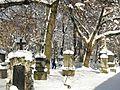 Alter Nördlicher Friedhof GO60.jpg