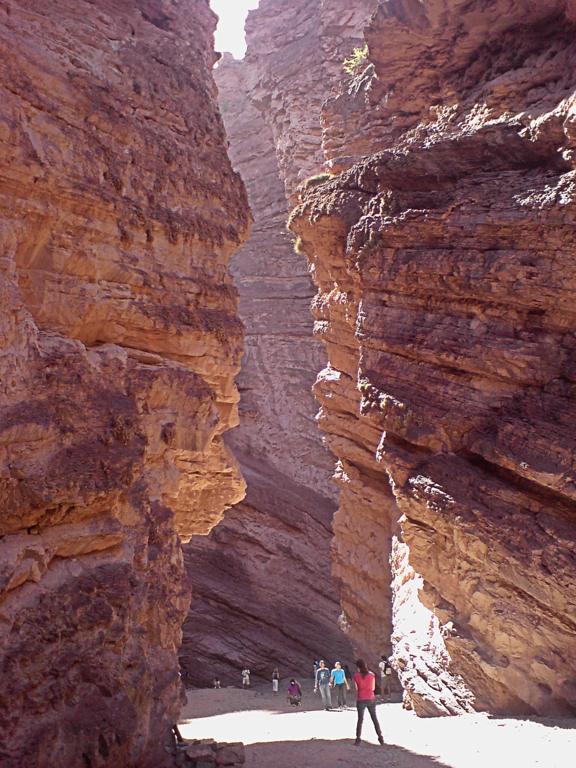 La era Cenozoica y sus características geológicas