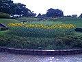 Aoba-no-mori - panoramio.jpg