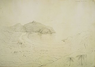 Arataonga Bay of Plenty