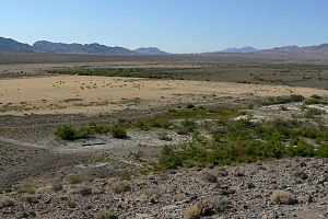 Great Basin Desert - Valley bottom at Ash Meadows National Wildlife Refuge