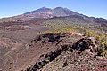 At Teide National Park 2019 079.jpg