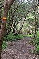 Atalho dos Vermelhos - panoramio (8).jpg