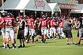 Atl Falcons training camp July 2016 IMG 7781.jpg