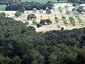 Ausblick Richtung Portocolom - panoramio (2).jpg