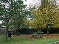 Autumn at Felton - geograph.org.uk - 1549830.jpg