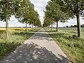 Avenue, Ahrenshagen-Daskow (LRM 20200517 164306).jpg