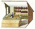 Bäckerladen 19 Jh.jpg
