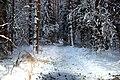 Balashikha, Moscow Oblast, Russia - panoramio (3).jpg