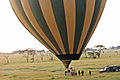Balloon Safari 2012 06 01 3087 (7522685864).jpg