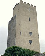 Ballyportry Tower House.jpg
