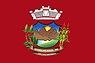 Bandeira,Vermelho,Novo.jpg