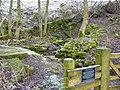 Bank Pit Spring, Chelmorton - geograph.org.uk - 1691393.jpg