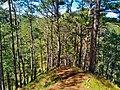 Bauko Peaks in Benguet - 9.jpg