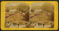 Beauties of the soldiers' home, Dayton, O, by Gates, G. F. (George F.) 4.png