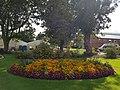 Belfast Botanic Gardens 20180914 134657 (49825300408).jpg