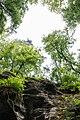 Berdorf (LU), Aesbachtal -- 2015 -- 6371.jpg