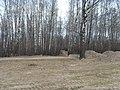 Bezhitskiy rayon, Bryansk, Bryanskaya oblast', Russia - panoramio (111).jpg