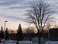 Biala-Podlaska-Terebelska-181224.jpg