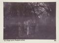 Bild från familjen von Hallwyls resa genom Egypten och Sudan, 5 november 1900 – 29 mars 1901 - Hallwylska museet - 91607.tif