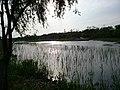 Binhu, Wuxi, Jiangsu, China - panoramio (285).jpg