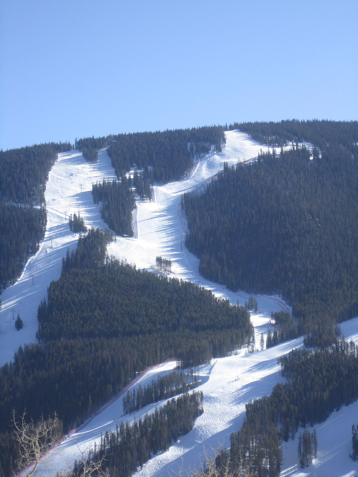 Birds Of Prey Ski Course Wikipedia