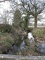 Bisterne, stream - geograph.org.uk - 2273264.jpg