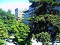 Black September Federal Republic of Germany - Fribourg Constitution Division - Master Habitat Rhine Valley Photography 2013 Cyberwar Utah - panoramio (6).jpg