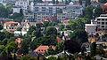 Blick auf Striesen-Dresden.jpg