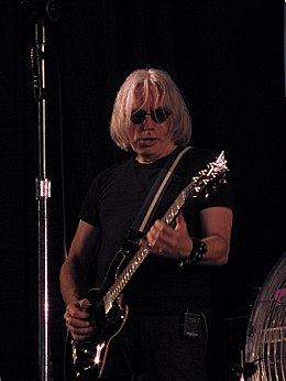 Blondie - Chris Stein - Zwarte Cross 2011.jpg