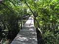 Boardwalk.muthupet.JPG