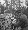 Bosbewerking, arbeiders, boomstammen, karren, vastbinden, Bestanddeelnr 253-5006.jpg