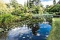 Botanic Gardens In Glasnevin (Dublin) (7951808468).jpg