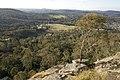 Bowral NSW 2576, Australia - panoramio (135).jpg