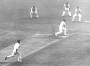 "Bradman hooks English left-arm fast bowler Bill Voce during the 1936–37 series. Note the position of Bradman's left foot in relation to the stumps, an example of how he ""used the crease"" when batting."