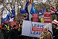 Brexit Demonstrators.jpg