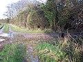 Bridleway and Footpath Junction - geograph.org.uk - 316055.jpg