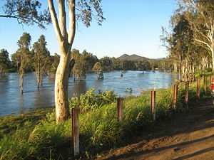 Brisbane River - The Brisbane River a short distance downstream of Wivenhoe Dam near Fernvale, while the spillway is open.