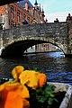 Bruges2014-106.jpg