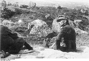 General der Gebirgstruppe - Image: Bundesarchiv Bild 183 B16420, Russland, General Eduard Dietl