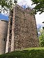 Burg-Reifenberg-JR-G6-6064-2017-05-25.jpg