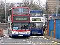 Bus img 8448 (16126981667).jpg