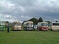 Bus lineup, Showbus 2002 (1).jpg