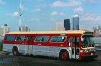 Bus with skyline.jpg